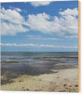 Low Tide In Paradise - Key West Wood Print