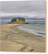 Low Tide In Popham Beach Maine Wood Print