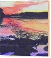 Low Tide On The Penobscot River Wood Print