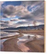 Low Waters Wood Print