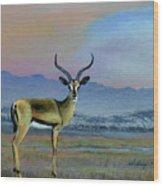 Lowell's Gazelle Wood Print