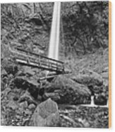 Lower Angle Of Elowah Falls In The Columbia River Gorge Wood Print