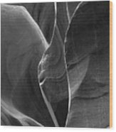 Lower Antelope Canyon 2 7968 Wood Print