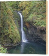 Lower Butte Creek Falls Plunging Into A Pool Wood Print