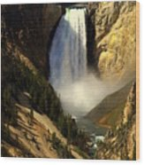 Lower Falls 2 Wood Print by Marty Koch
