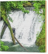 Lower Falls 4 Wood Print