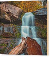 Lower Falls At Kaaterskill Wood Print