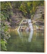 Lower Falls Of Enfield Glen Robert H. Treman State Park Wood Print