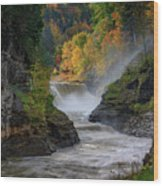 Lower Falls Of The Genesee River Wood Print