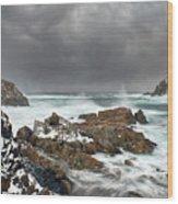 Lower Little Harbour Wood Print