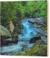 Lower Lynn Camp Falls Smoky Mountains Wood Print