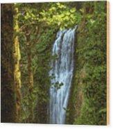 Lower Multanomah Falls, Oregon Wood Print