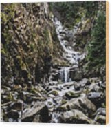 Lower Reid Falls Wood Print