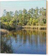 Lower Suwannee Refuge II Wood Print