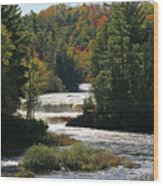Lower Tahquamenon Falls  4349 Wood Print