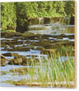 Lower Tahquamenon Falls 6128 Wood Print