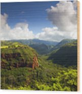 Lower Wiamea View Wood Print