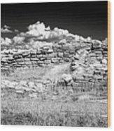 Lowry Pueblo Ruin Black And White Wood Print