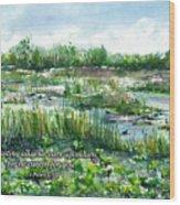 Loxahatchee Marsh 1 Peter 5 Wood Print
