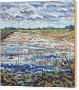 Loxahatchee Wetlands Wood Print
