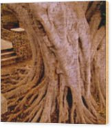 Lr I 2 82 6 Wood Print
