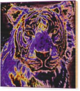 Lsu Tiger Wood Print