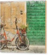 Lucca Italy Bike Watercolor Wood Print