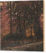 Luci Nel Bosco Wood Print