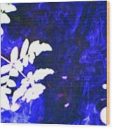 Lucid Dreaming Wood Print