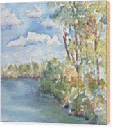 Lucien Lake Shoreline Wood Print