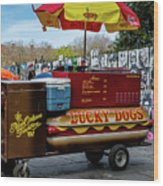 Lucky Dogs Wood Print