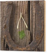 Lucky Horseshoe Wood Print by Garry Gay