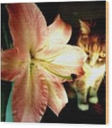 Lucy With Lily Wood Print