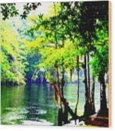 Lumber River Wood Print