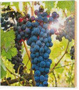 Luminous Grapes Wood Print