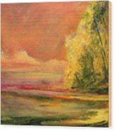 Luminous Sunset 2-16-06 Julianne Felton Wood Print