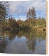 Lumsdale Pool Wood Print