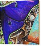 Luna Moth False Color Work One Wood Print