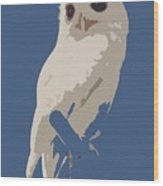 Luna The Rescued White Leucistic Eastern Screech Owl Abstracted Wood Print