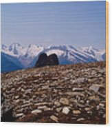 Lunar Landscape In The Mountains Wood Print