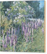 Lupine On Parade Wood Print
