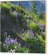 Lupine Slopes Wood Print
