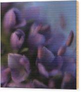 Luscious Lilac Wood Print by Bonnie Bruno