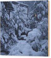 Luscious Snowfall Wood Print