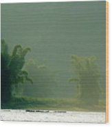 Lush Bamboo Trees On The Banks Of The Li Jiang River In Yangshuo Wood Print