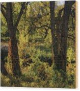 Lush Garden Wood Print