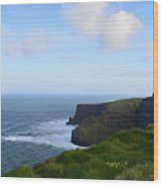 Lush Green Grass Along The Top Of The Cliffs Of Moher Wood Print