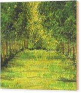 Tropical Trees Theosophical Society Chennai Wood Print