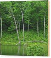 Lush Green Pond Wood Print