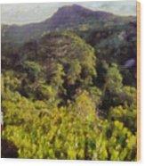 Lush Greenery While Trekking Wood Print